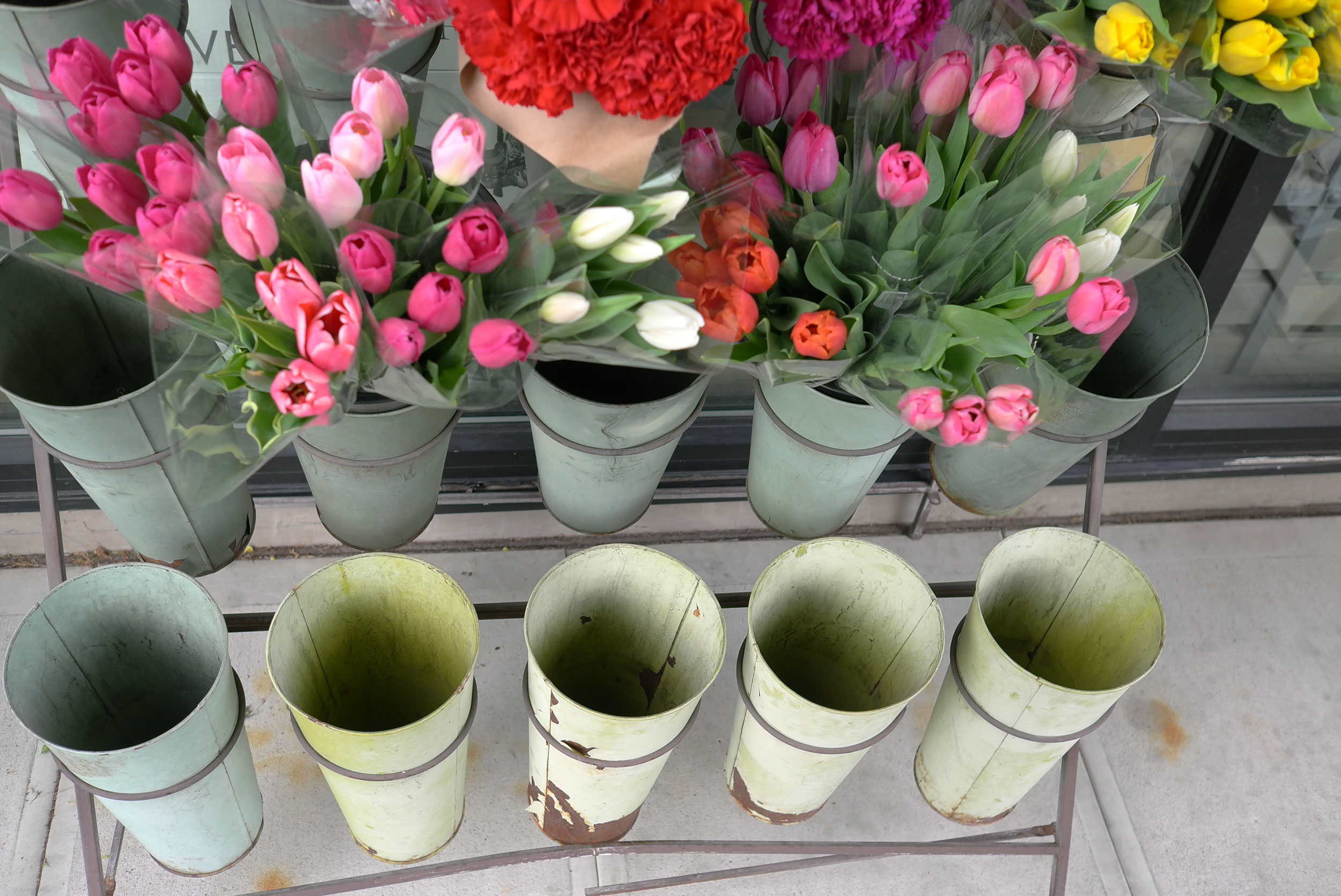 sidewalk tulips and flower cans