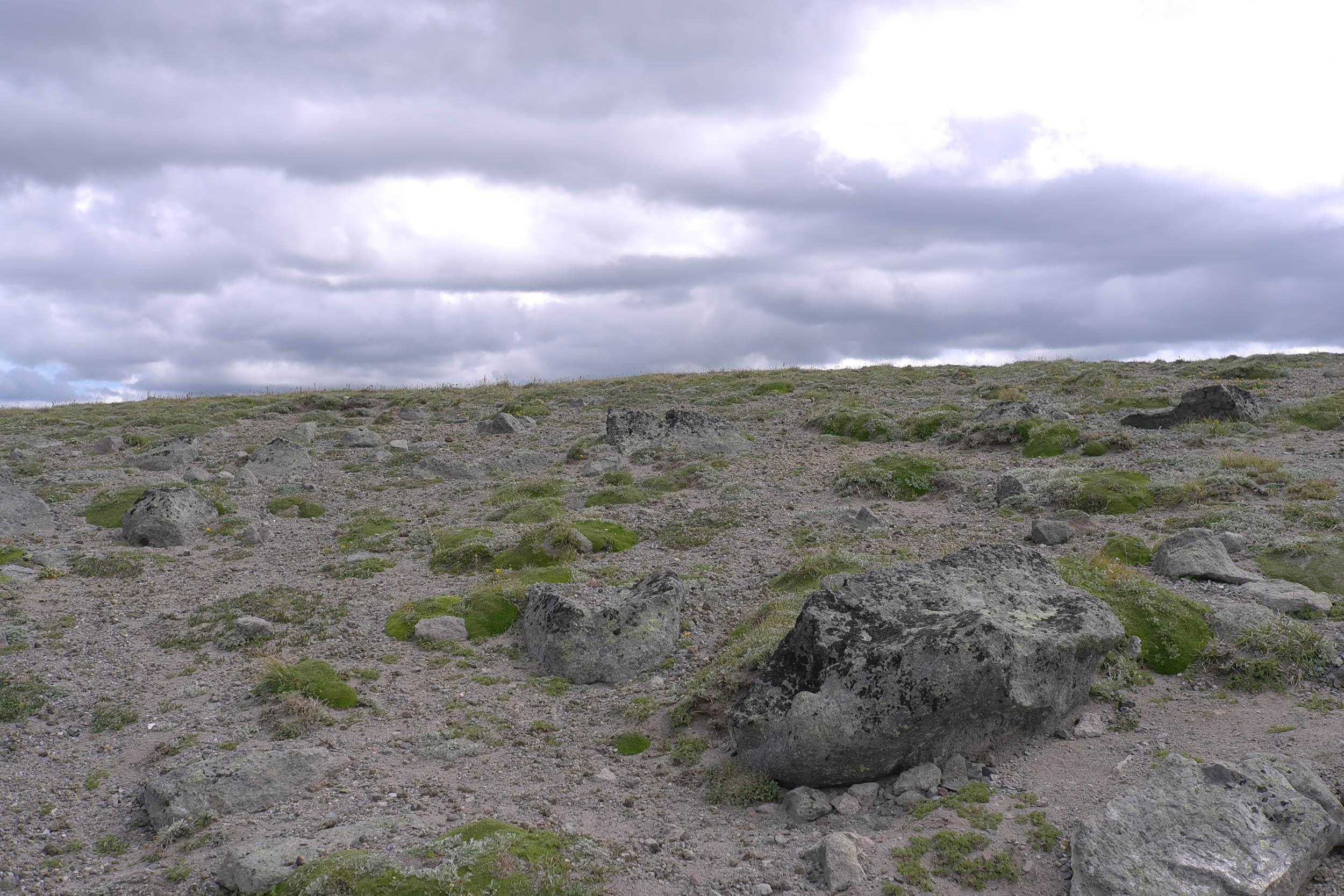 tundra plateau