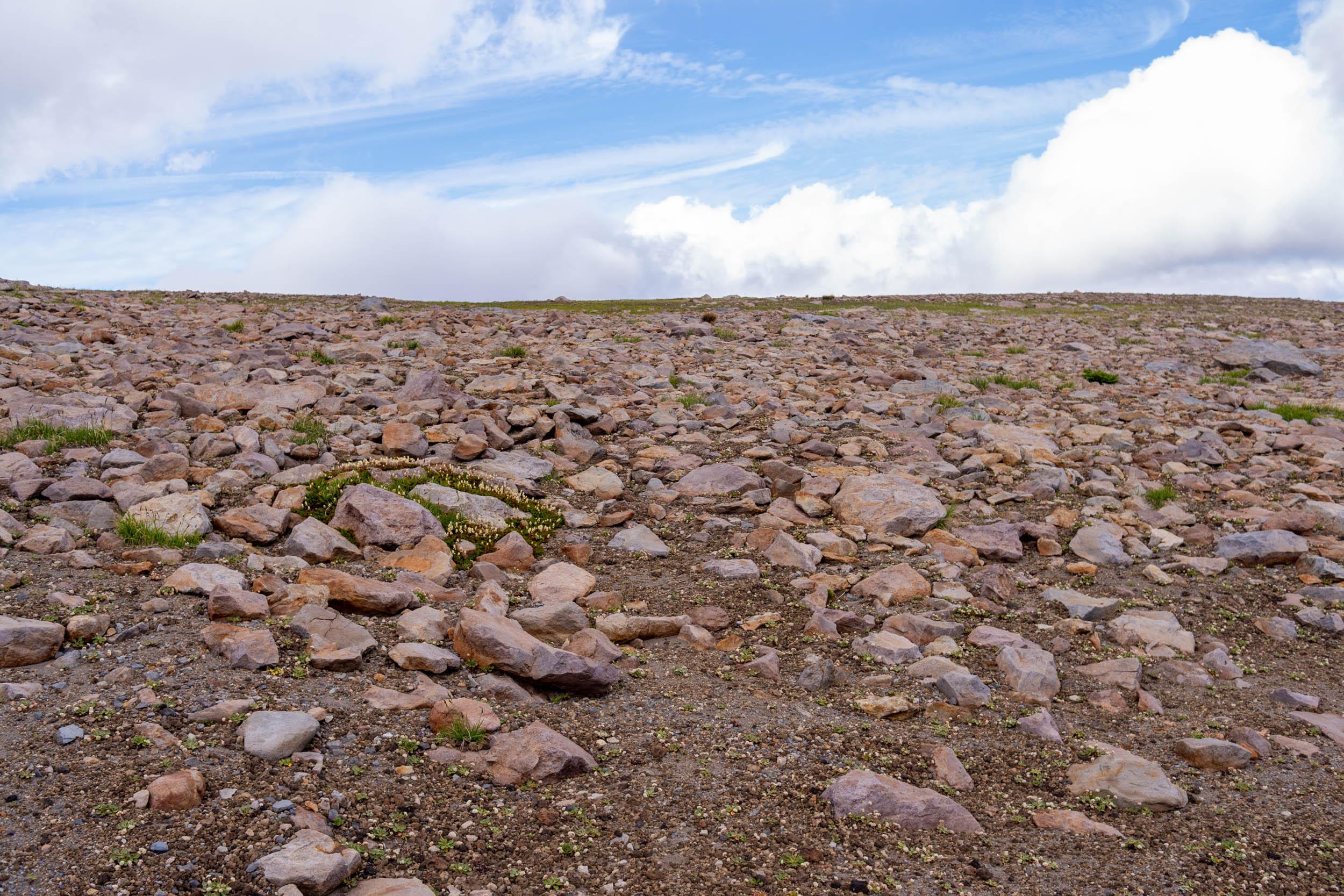 tundraland skyline