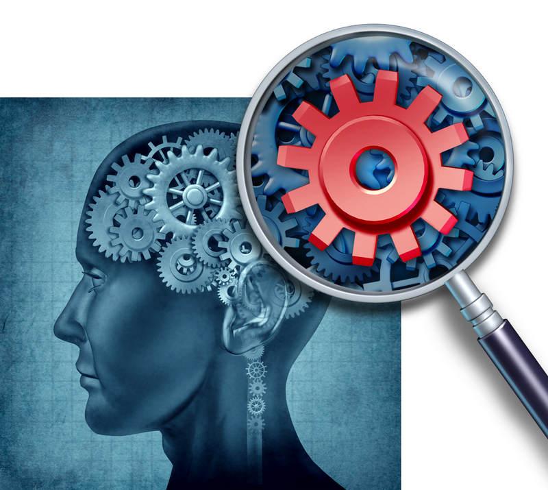 Brain-Cogs.jpg