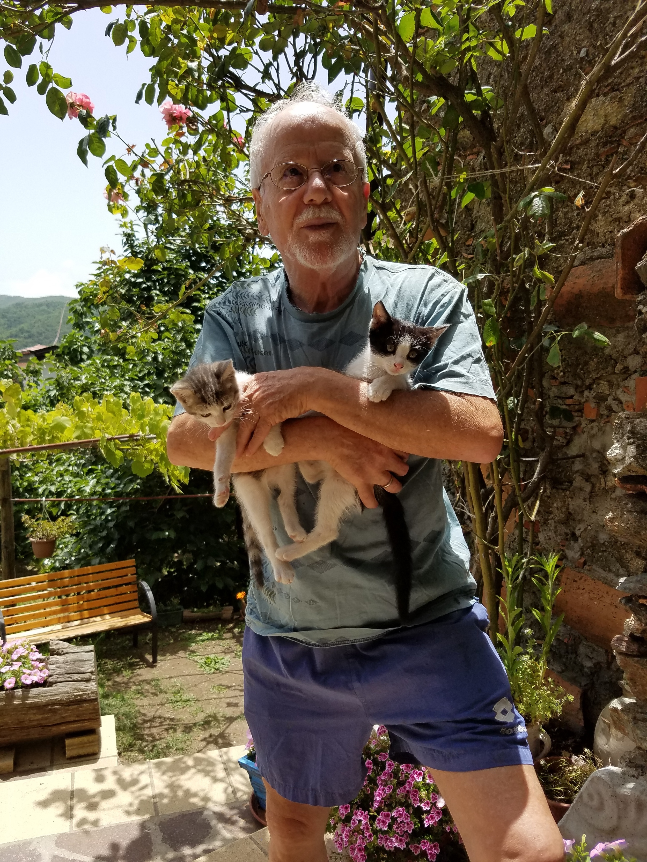 Il Direttore with the kittens.