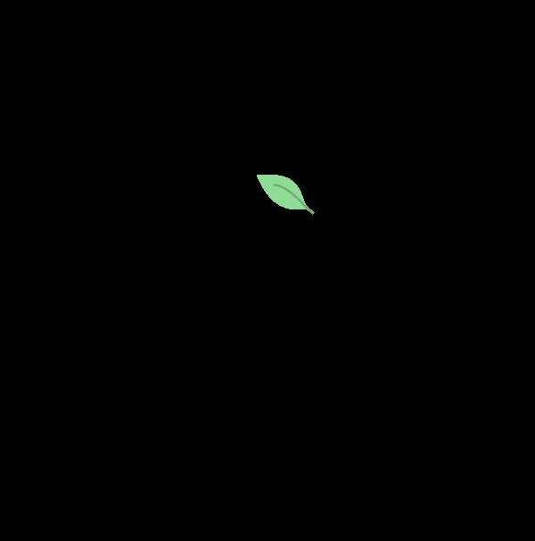 Final logo detail
