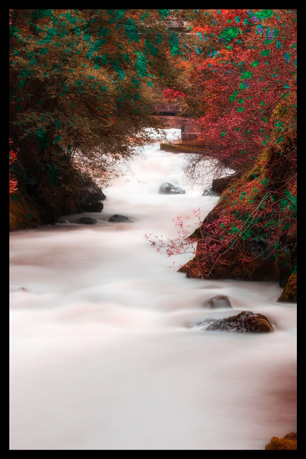 Tumwater Falls under autumn spell
