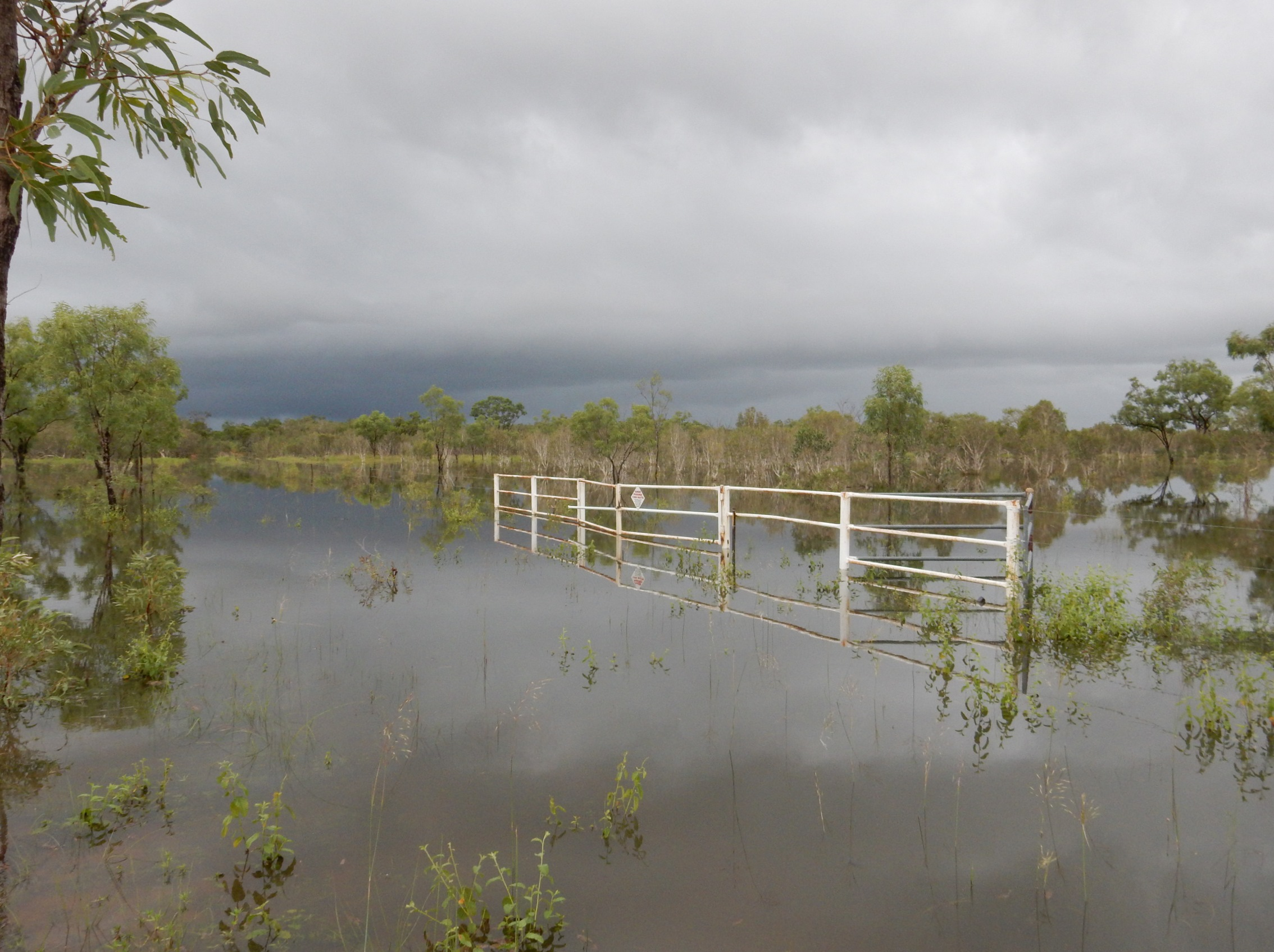 The Taylor's Lagoon gate in February. Guess we'll walk in then. Photo: John Graff