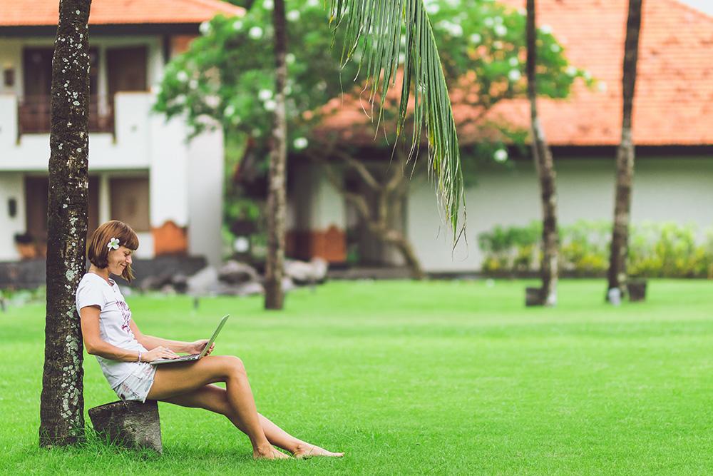 Taxes Under Palm Tree.jpg