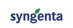 logo_sy.png
