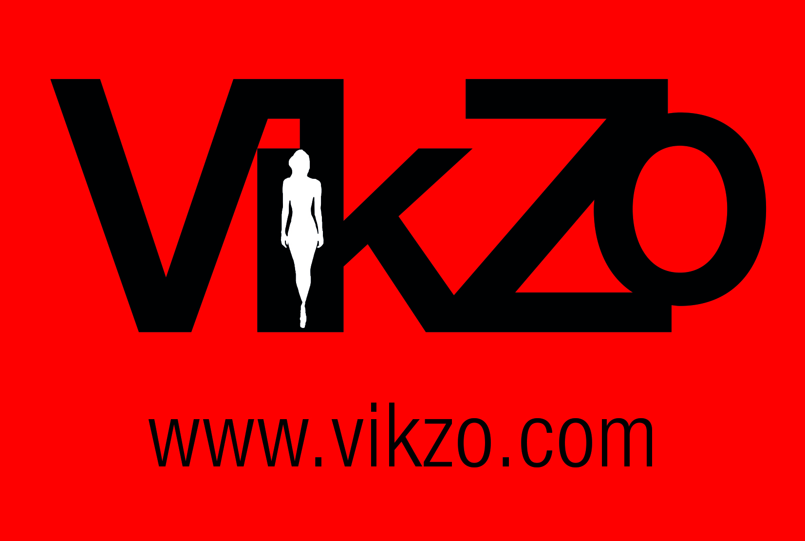 vikzo_logo.jpg