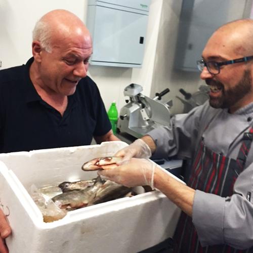 DAILY FISH SUPPLIES