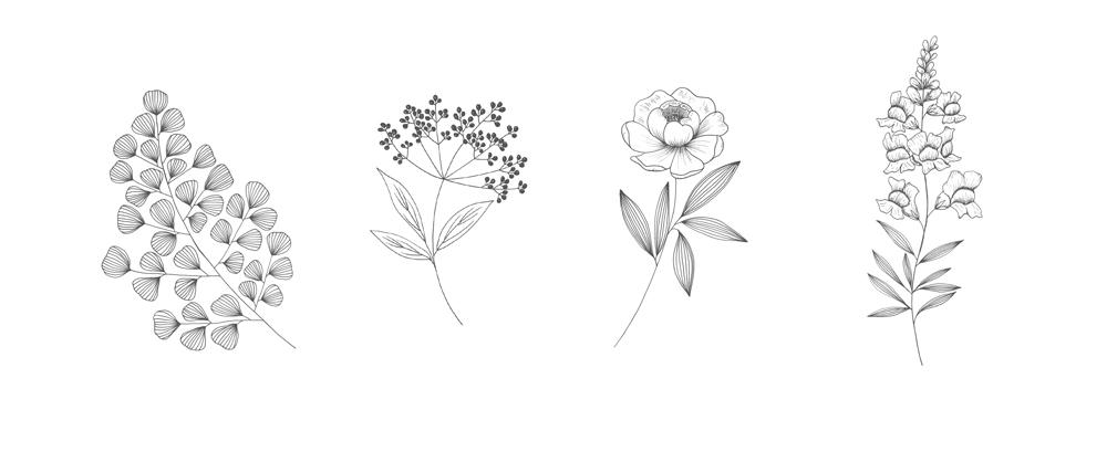 Maidenhair fern, elderberry, peony and snapdragon.