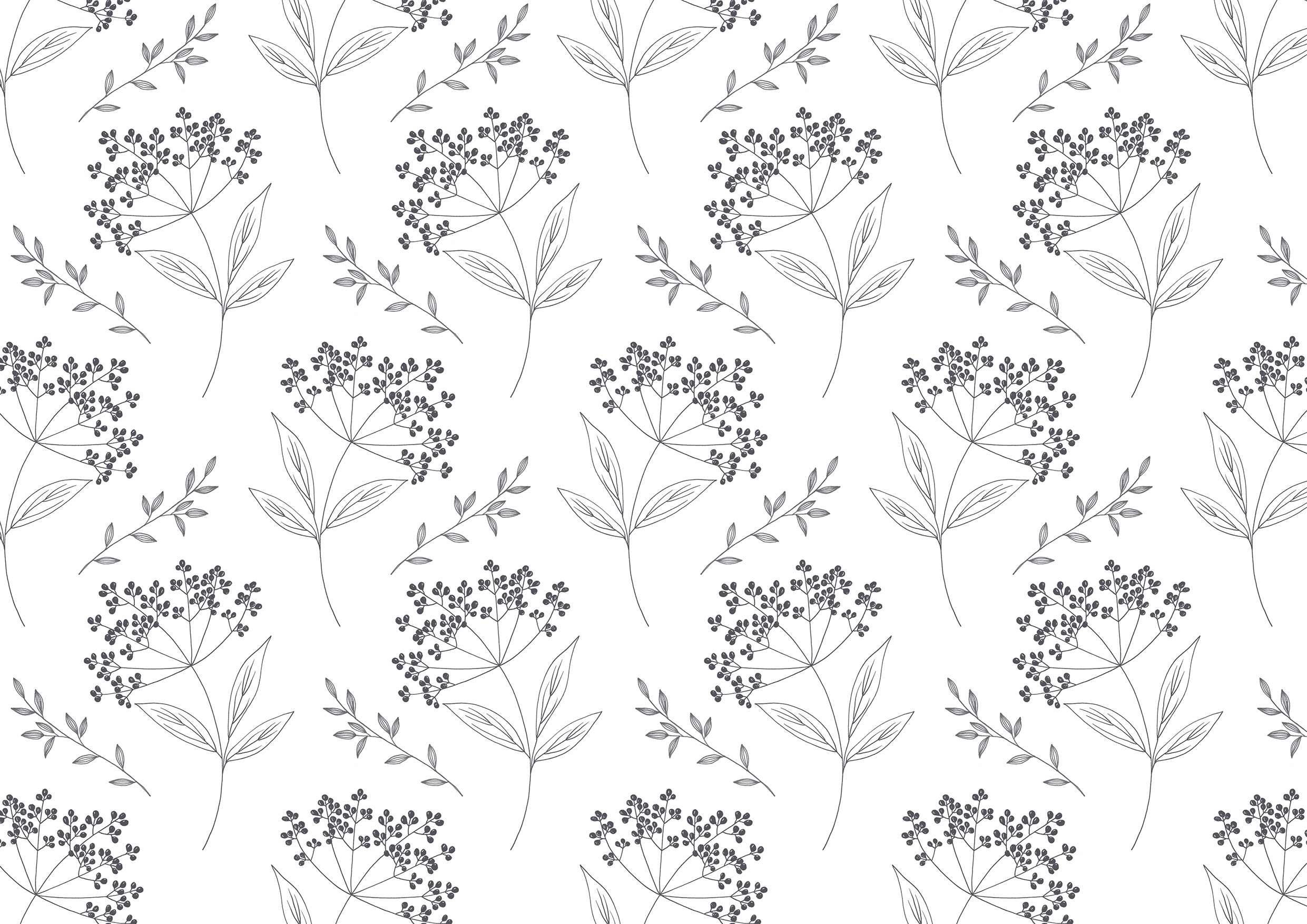 elderberry pattern.jpg