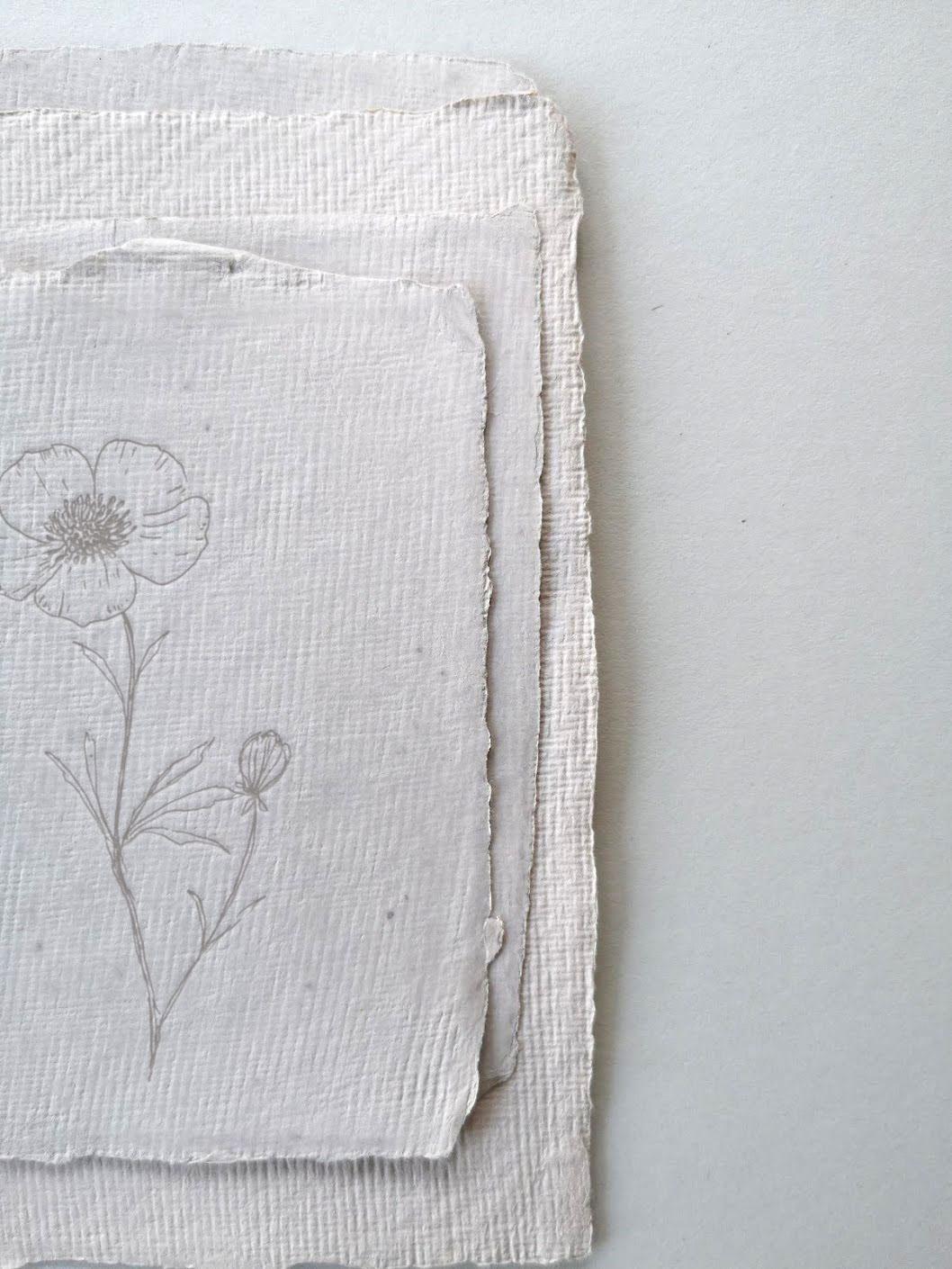 Buttercup_on_handmade_paper.jpg