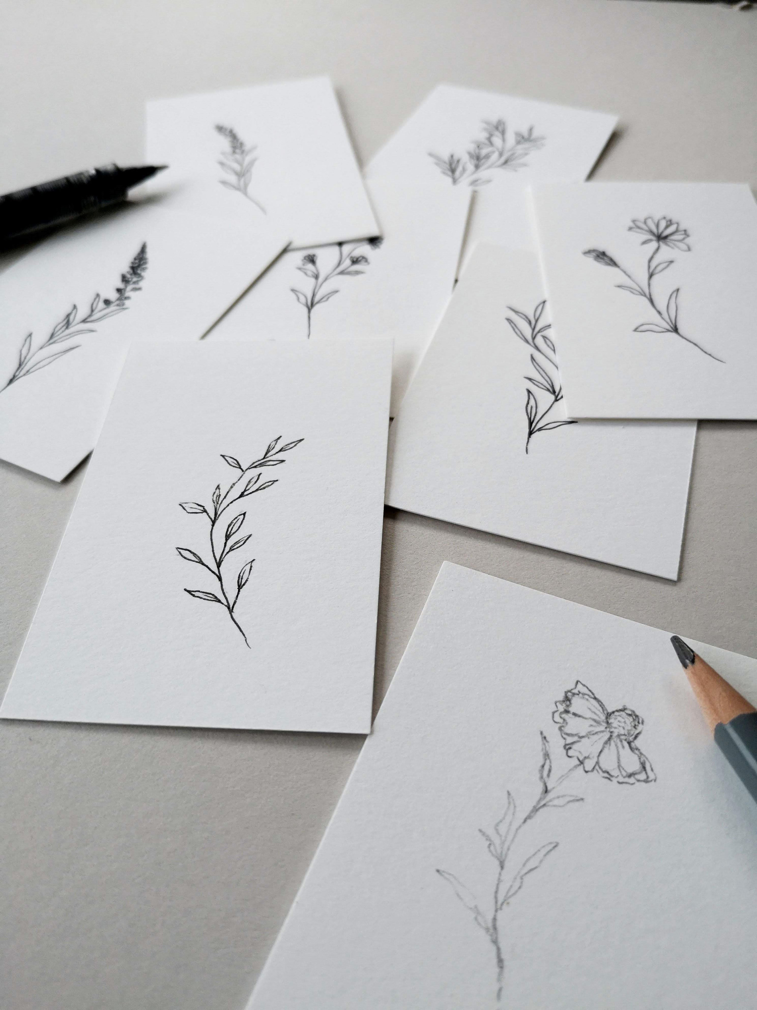 botanical_sketches.jpg