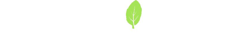 Vibrant Meals Logo