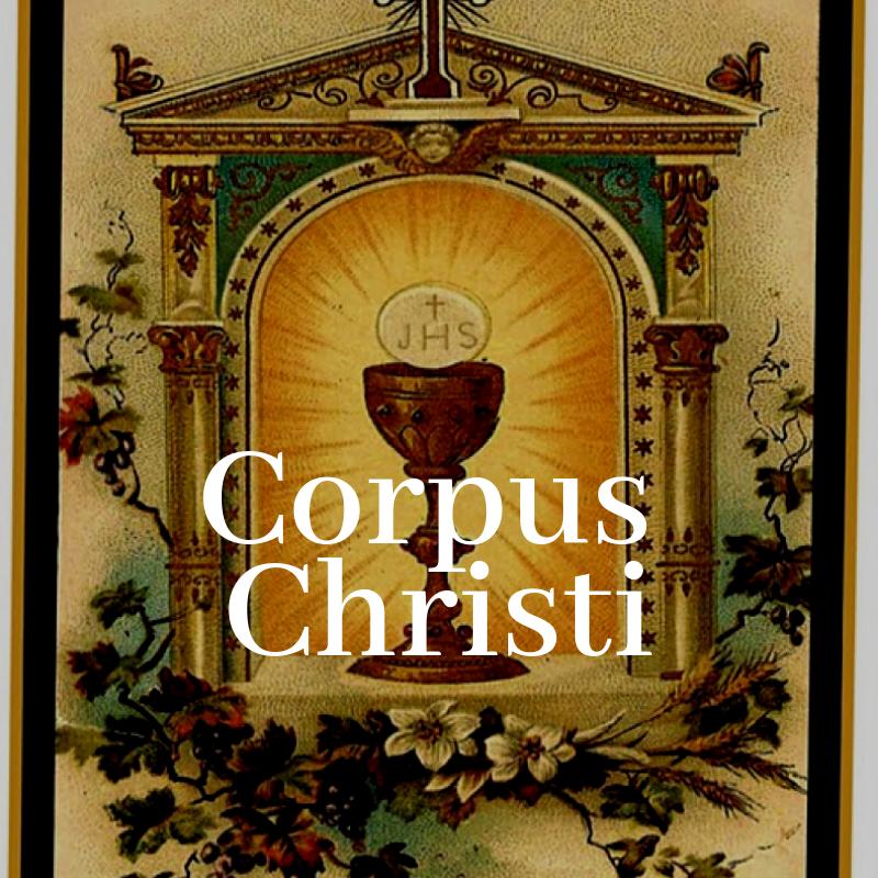 Copy of Copy of Copy of Feria (18).png