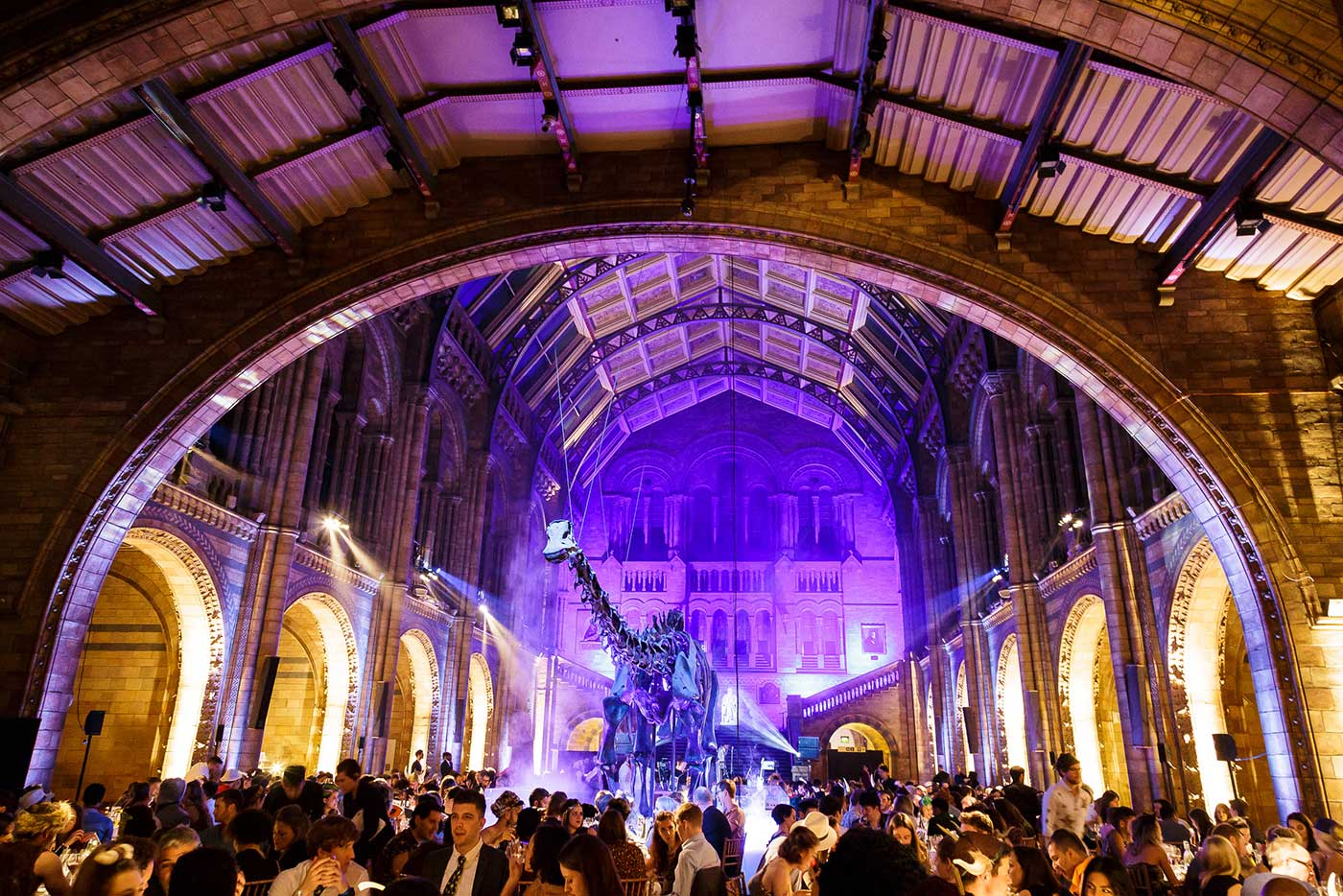 Innocent staff corporate event at the Natural History Museum
