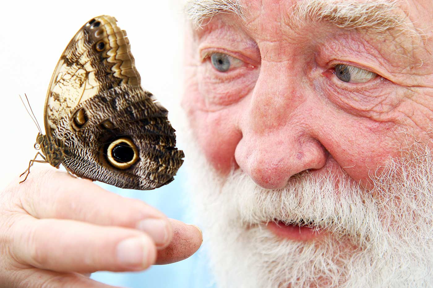 David-Bellamy-at-Butterfly-World.jpg