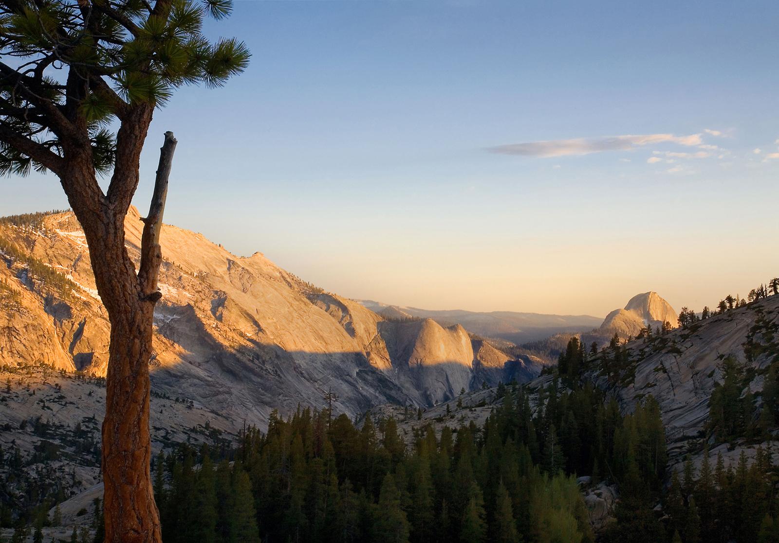 WS-Half-Dome Yosemite National Park New Web copy.jpg