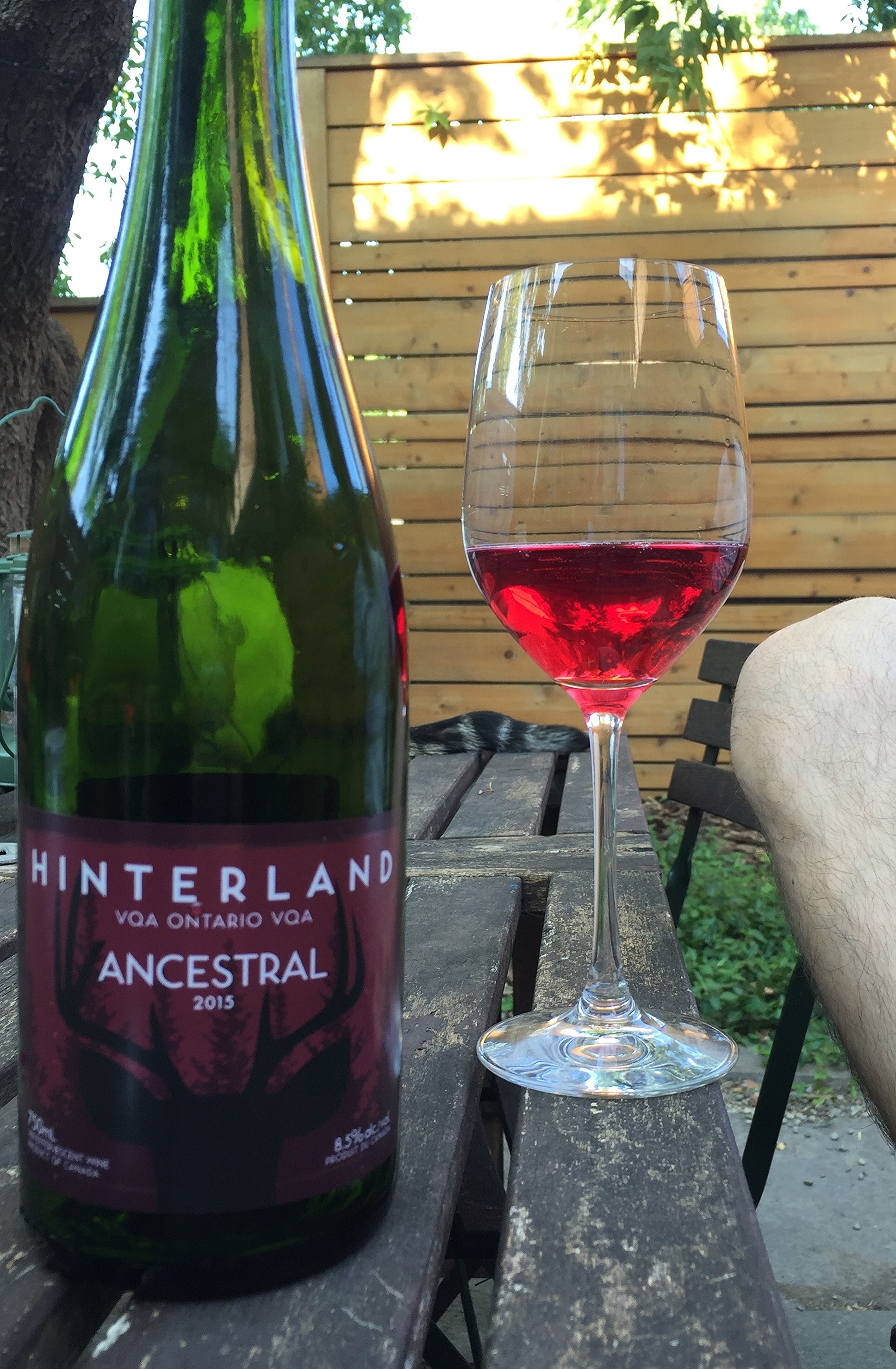 Hinterland Ancestral 2015 review