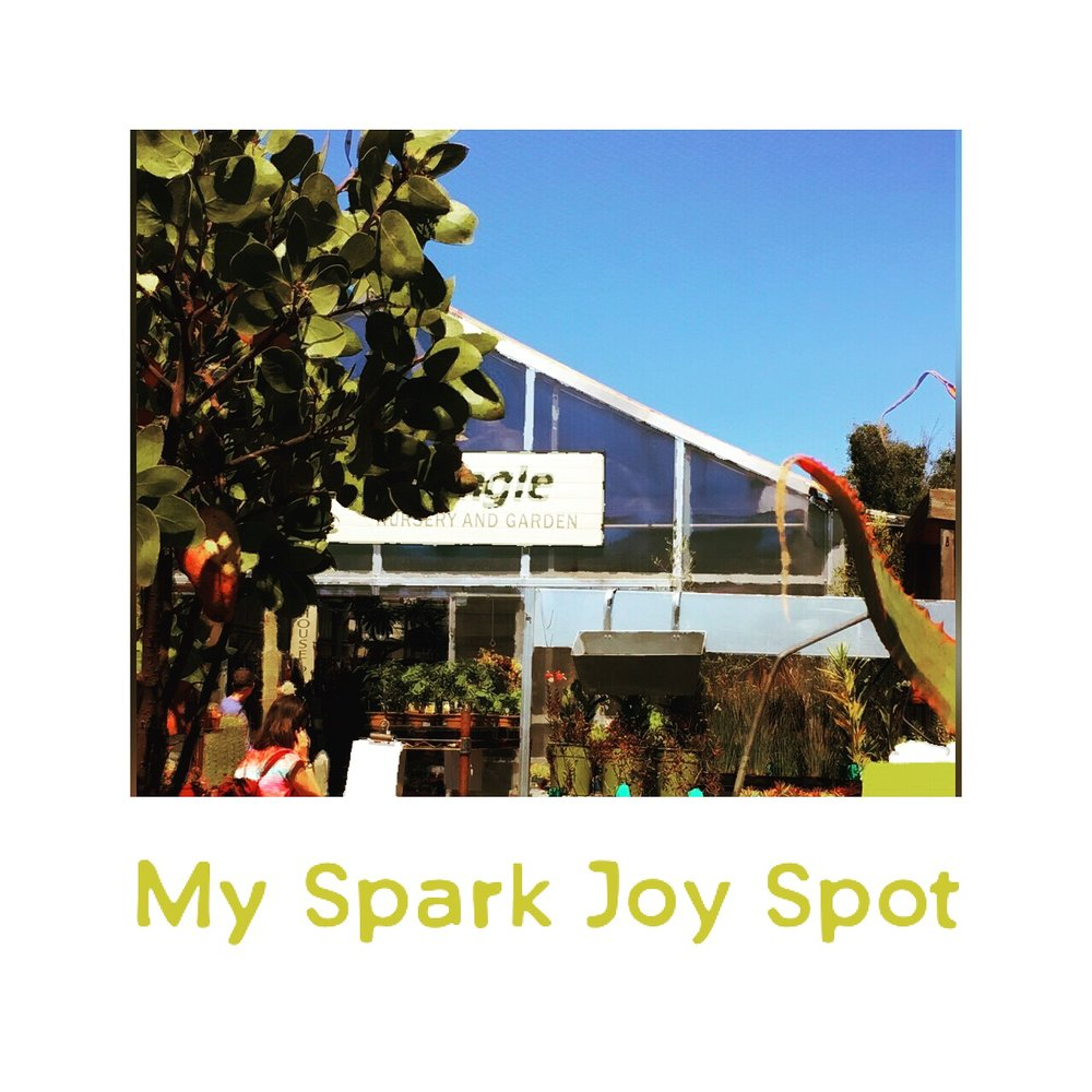 5:30:17 What sparks joy for you?.JPG