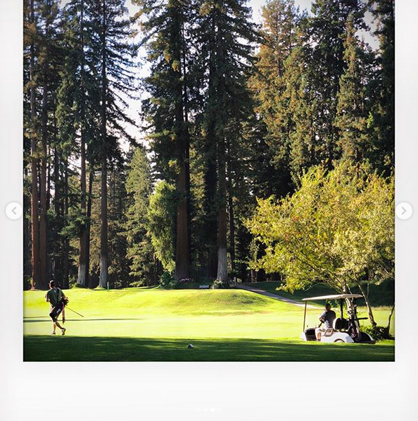 A photo of a bright green golf course, surrounded by tall evergreen trees.