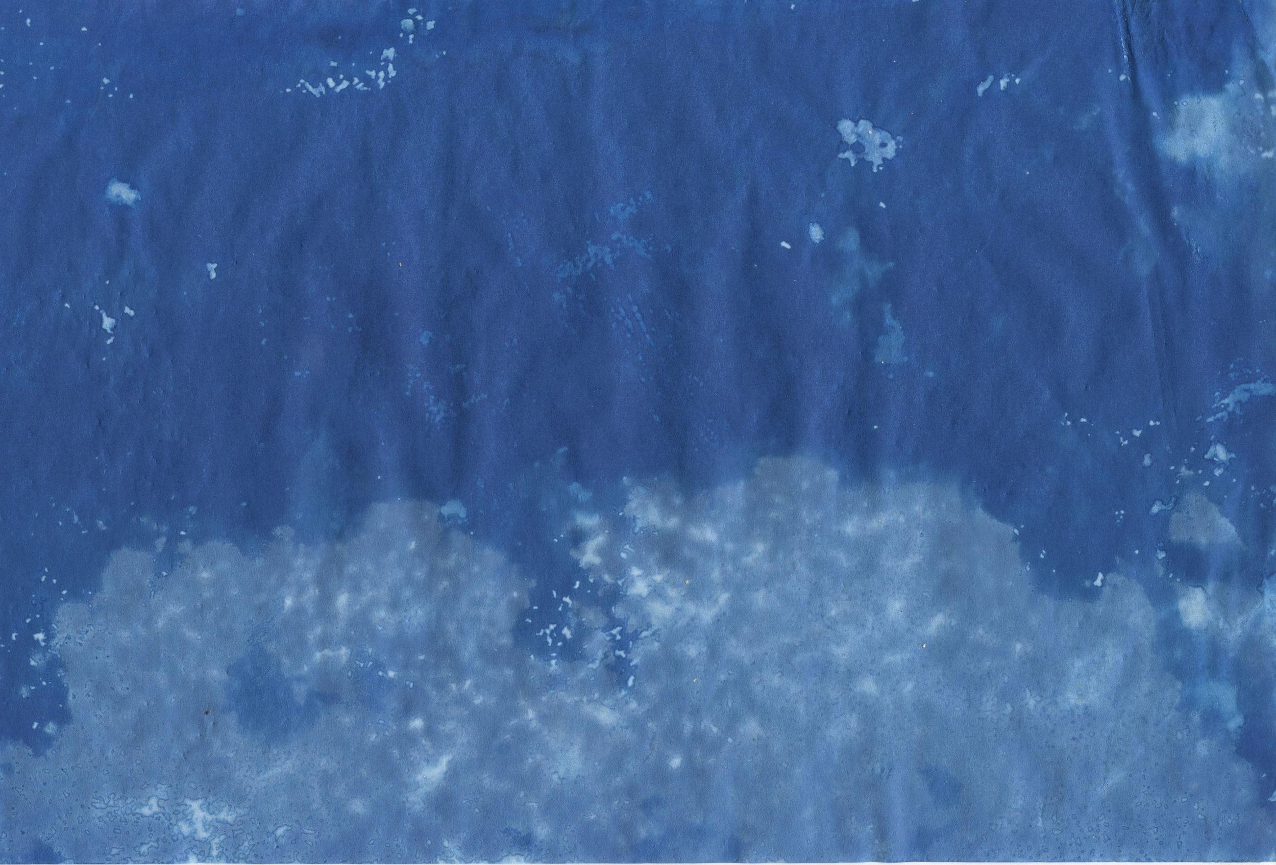 scan 17.jpg