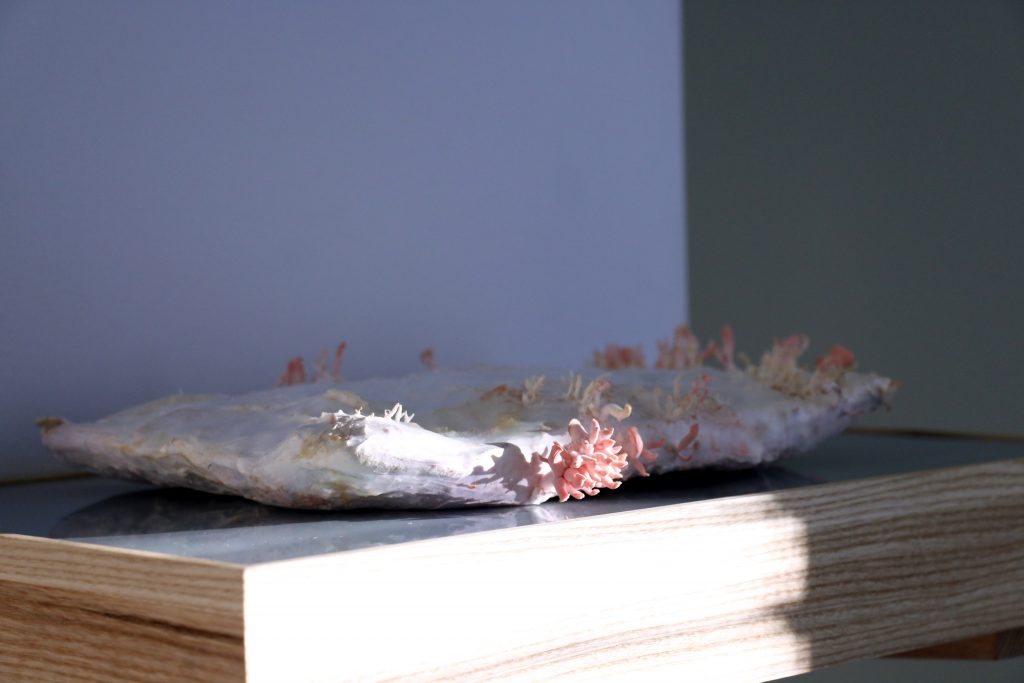 Oskar Jakobsen,  Reading Group  (2017). Installation shot: Aage A. Mikalsen / Kunsthall Trondheim