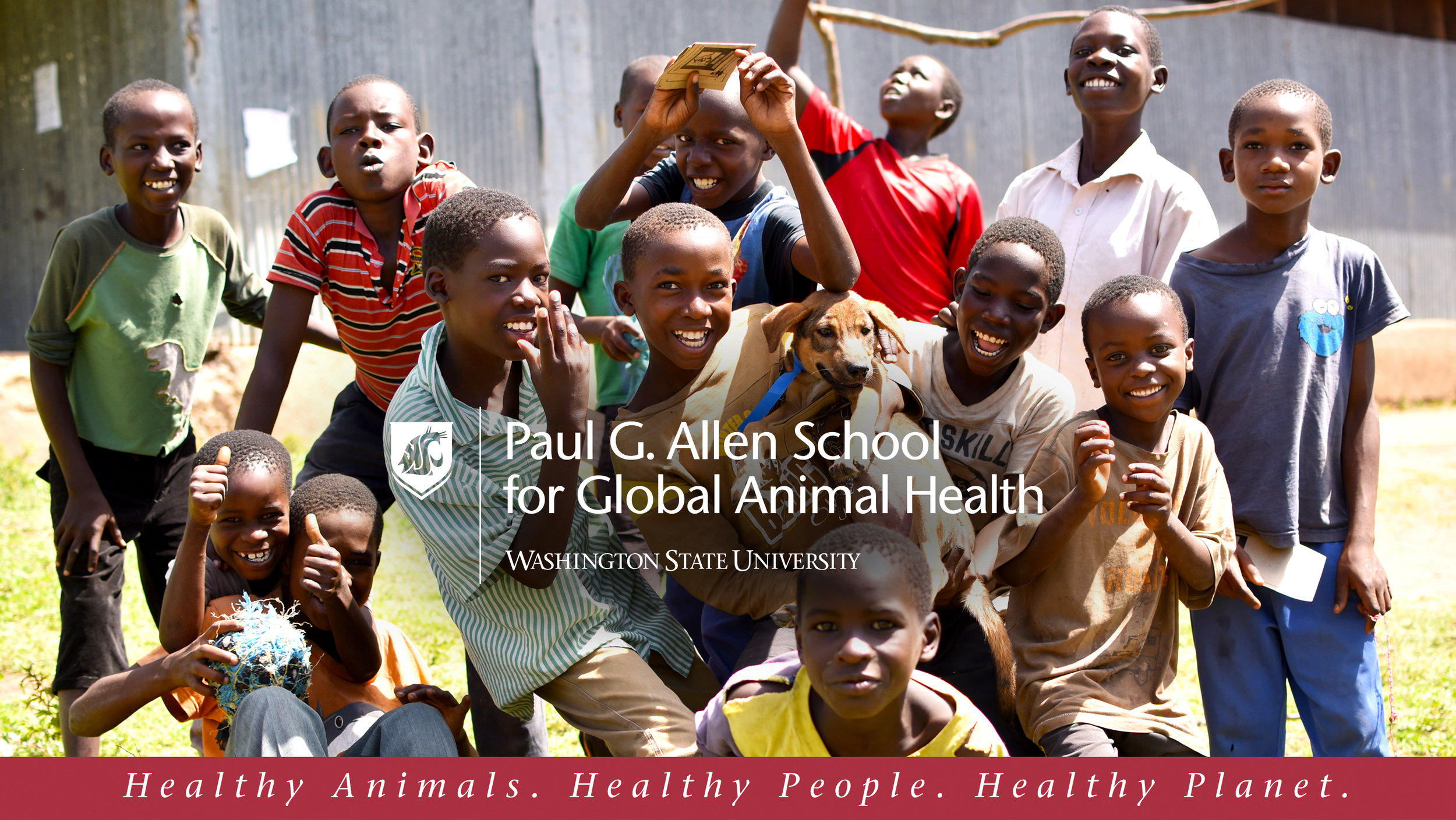 A few years ago, we learned Dr. Guy Palmer, one of our former vet school professors, was starting a campaign through the Paul G. Allen School for Global Animal Health to try to eliminate canine & human cases of Rabies worldwide.  Rabies kills more than 59,000 people a year, most of them children.  The Allen School has shown that Rabies deaths can be virtually eliminated by vaccinating the dogs in an area and through canine vaccination has created a Rabies-free zone along the Serengeti.  This not only protects the people and dogs in the area but also helps prevent the spread of Rabies to endangered wild animals. (To learn more about this project or to donate, see their website at  www.eliminaterabies.wsu.edu .)