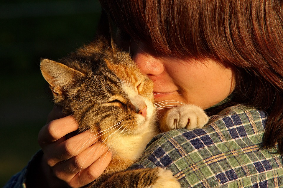 Young person holding an older cat