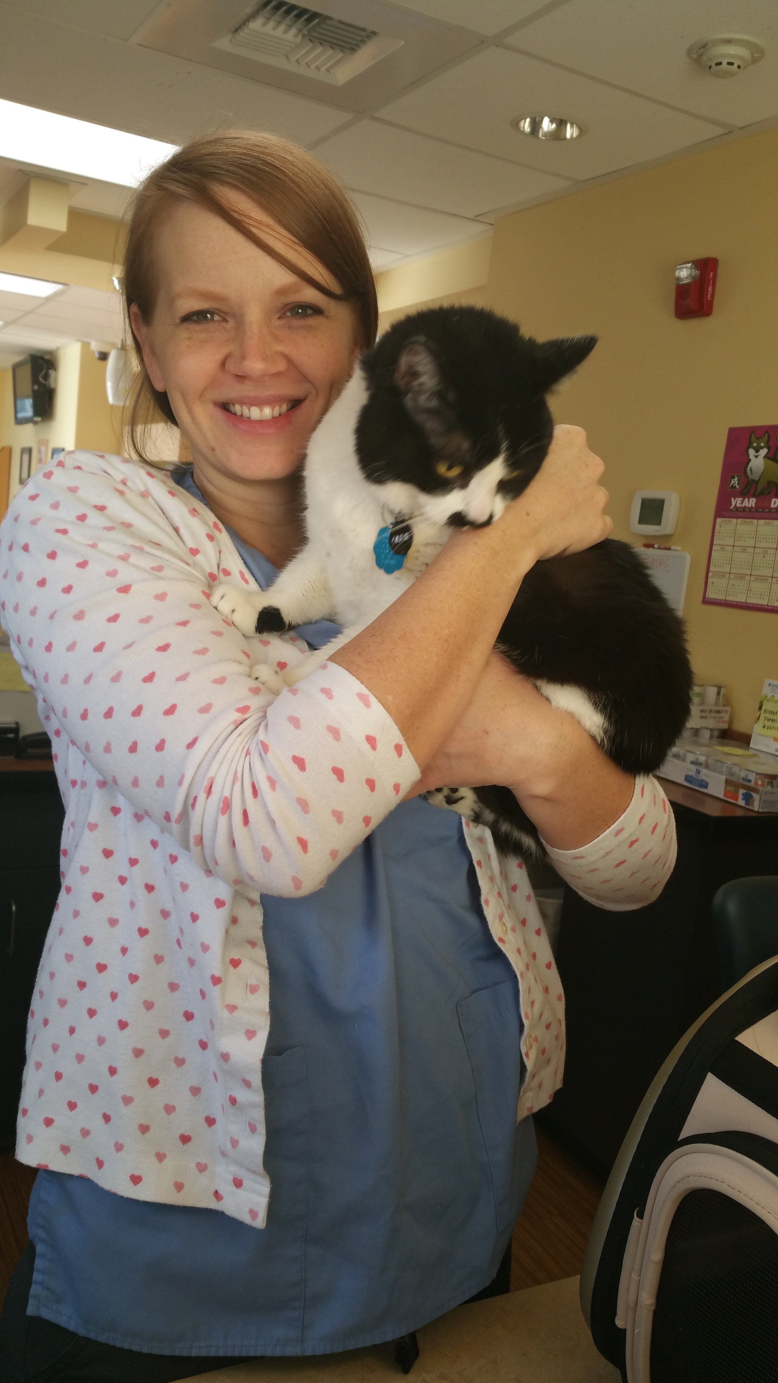 Kacee, one of the fantastic American Dental Care technicians, is highly skilled but also gentle with your dog and cat.