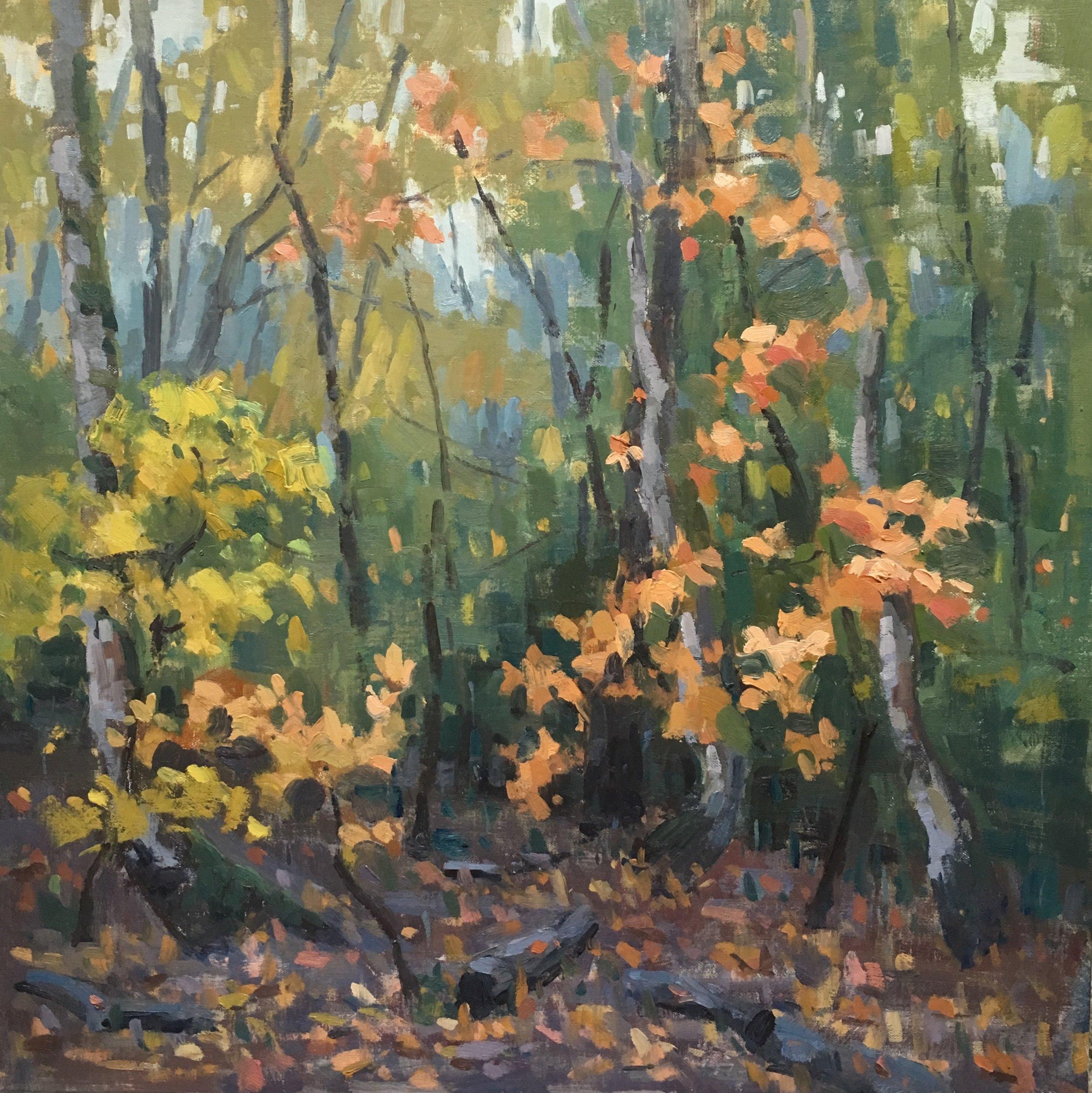 Bhavan Krishnan, Autumn Enigma