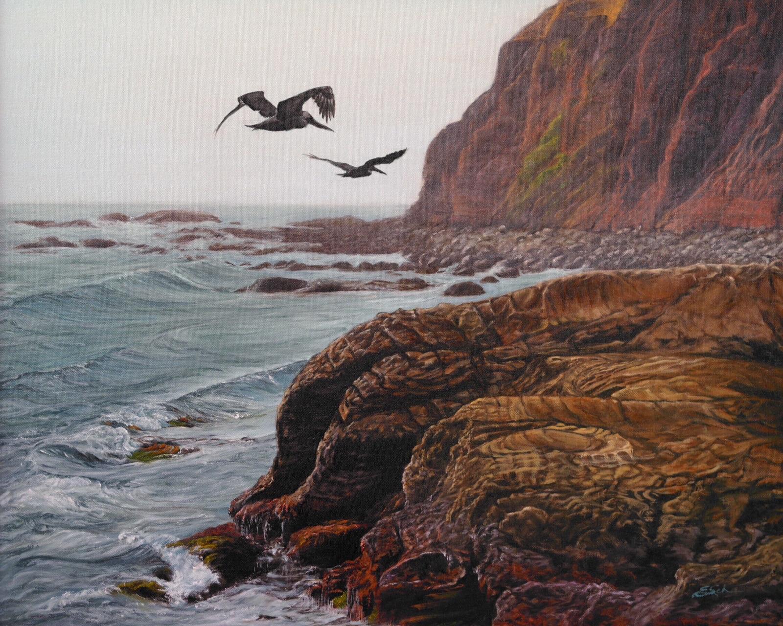 Ellen Schauer, Pelicans Reef
