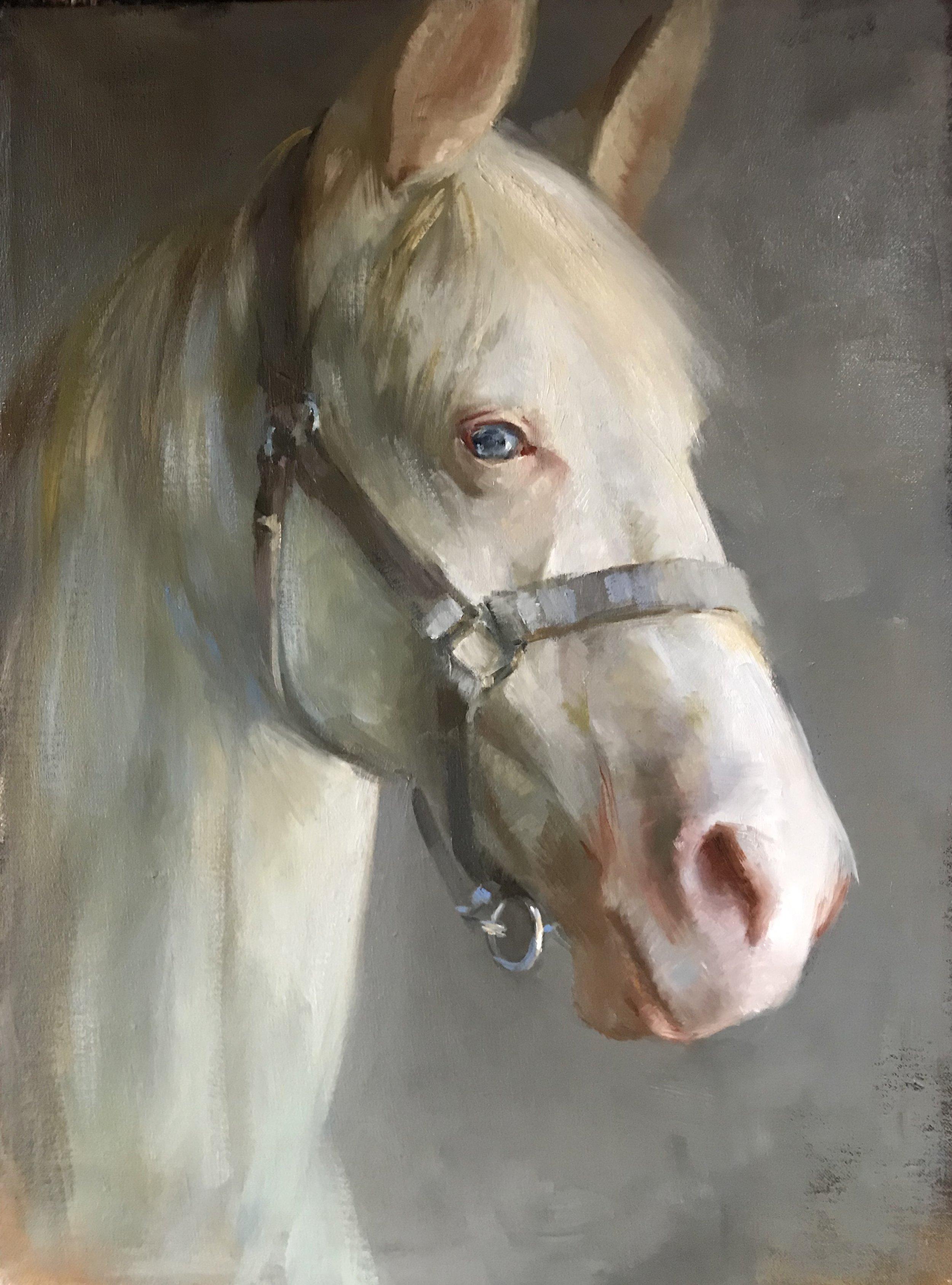 Katherine Galbraith, The White Horse