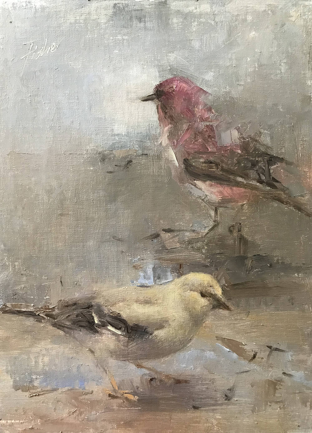 Kathryn Fisher, Winter Finches
