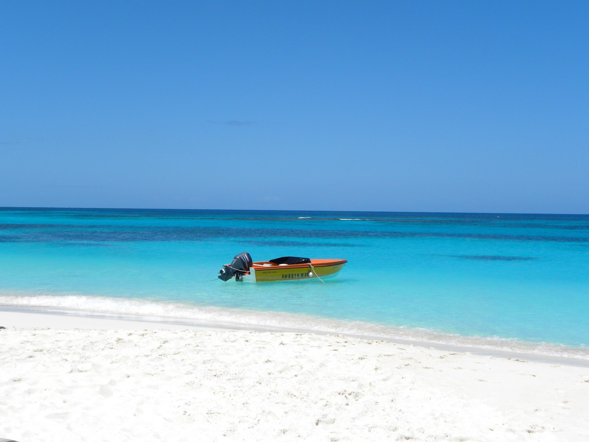 anguilla-jpg