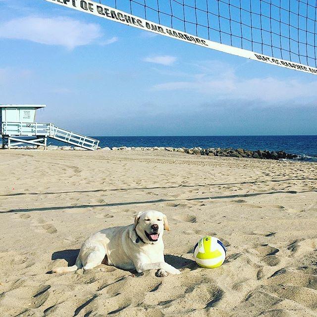 cole-on-beach.jpg