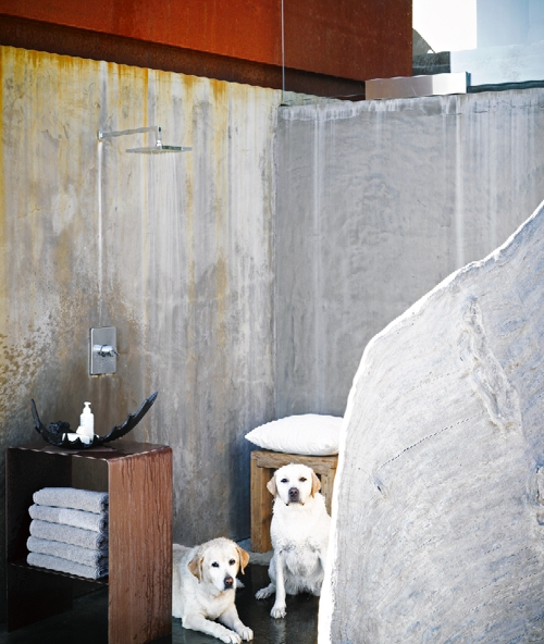 Since my dogs and I go to the beach so much, I made sure my house has an outdoor shower that we all love to use.