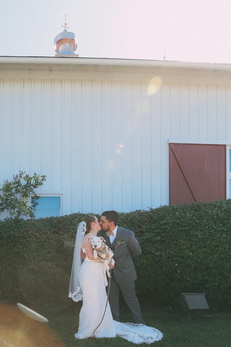 Le Cape Weddings - Grayslake Weddings - Cara and Jeffrey 3514-X3.jpg
