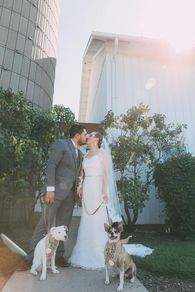 Le Cape Weddings - Grayslake Weddings - Cara and Jeffrey 3516-X3.jpg