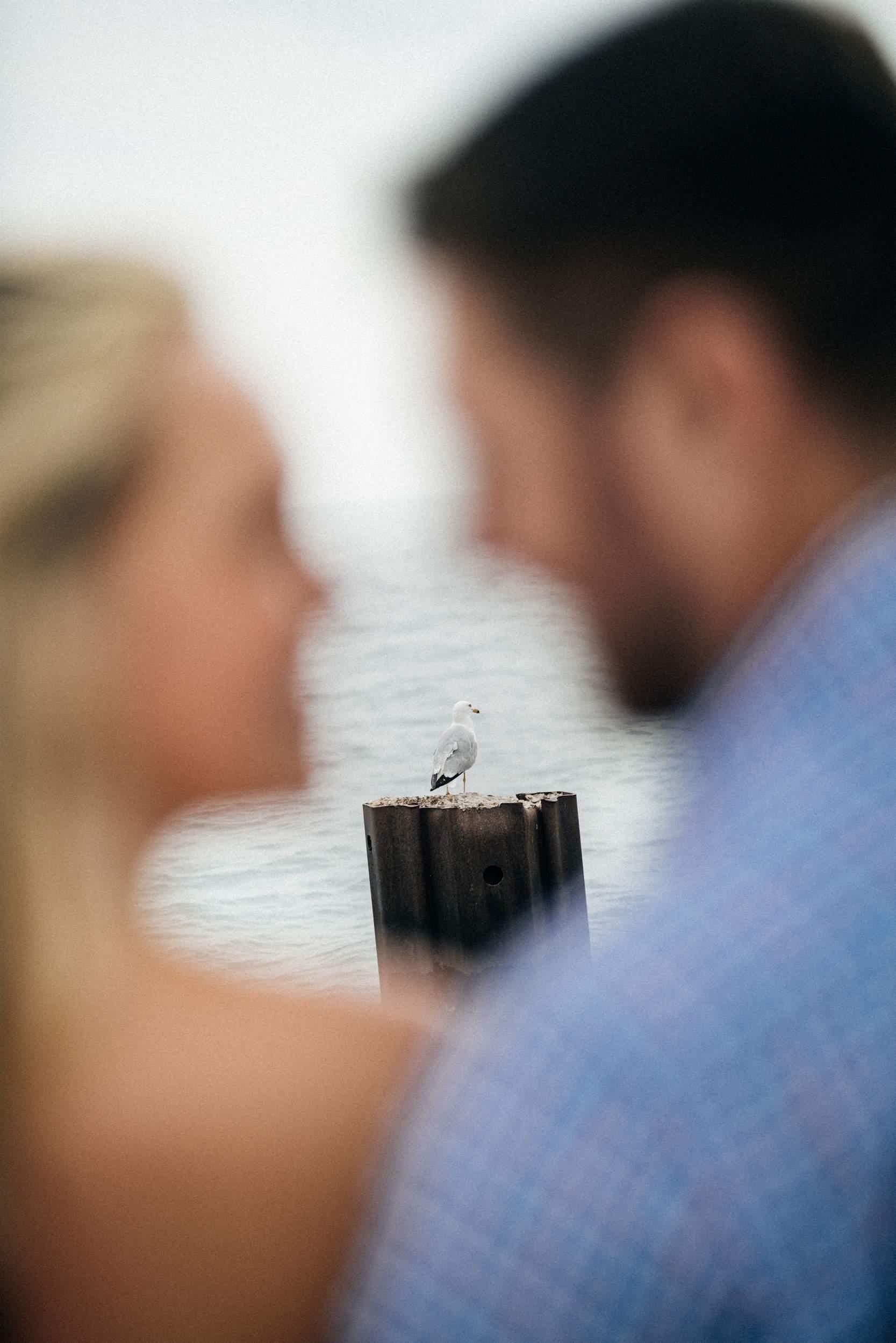 LeCapeWeddings_Chicago Engagement Photography (62 of 62).jpg