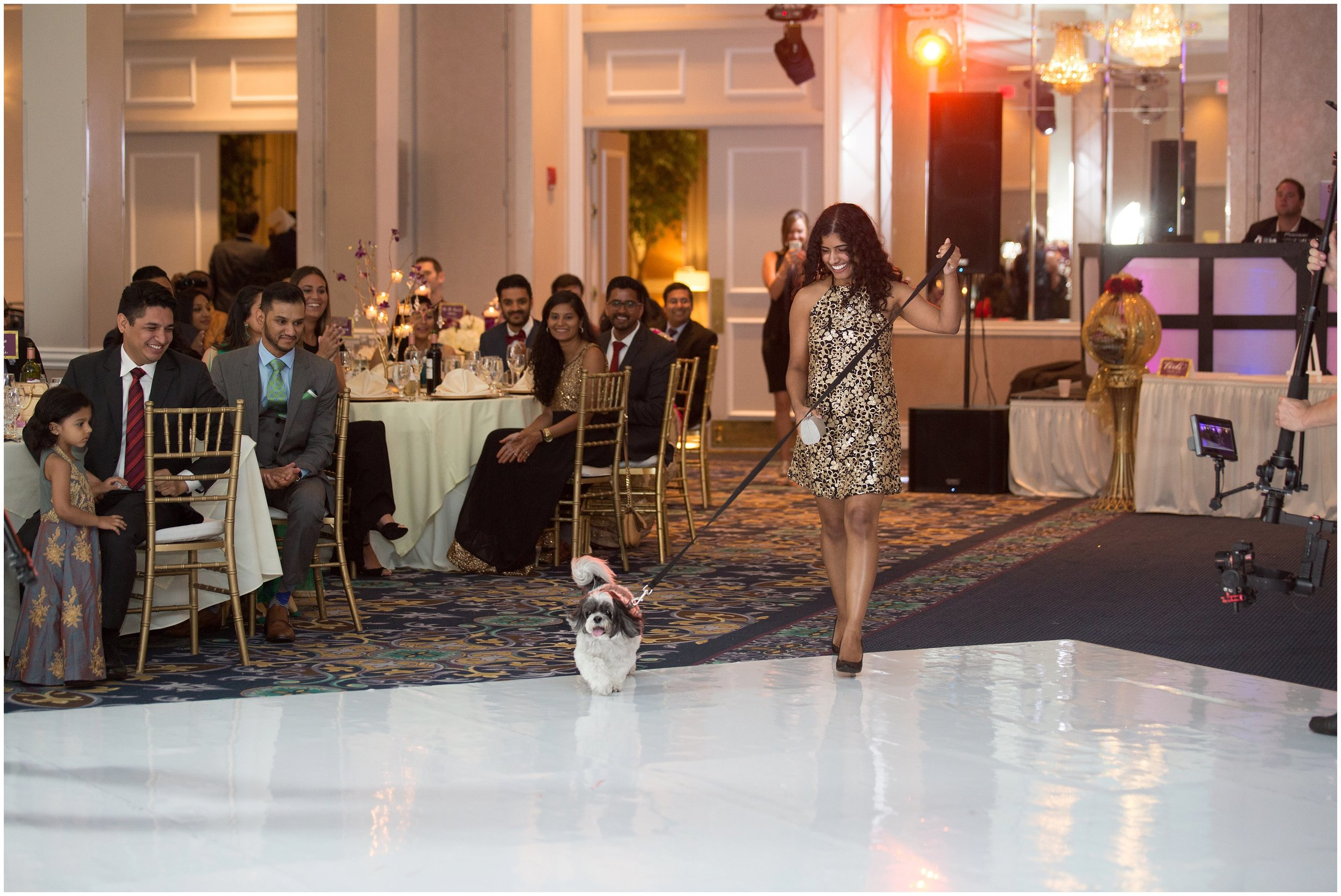 Le Cape Weddings - South Asian Wedding in Illinois - Tanvi and Anshul -2192_LuxuryDestinationPhotographer.jpg
