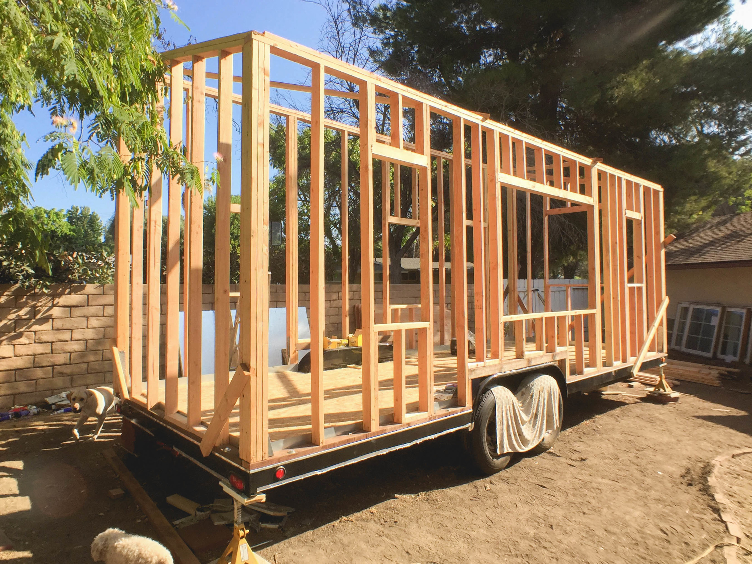 Done! Next comes the roof and sheathing!