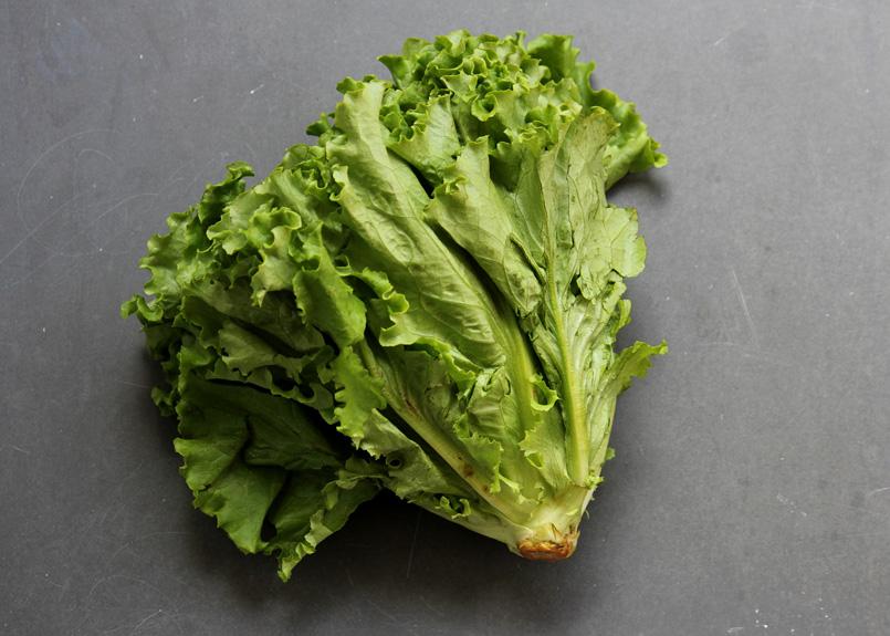 SFC_lettuce_greenleaf.jpg