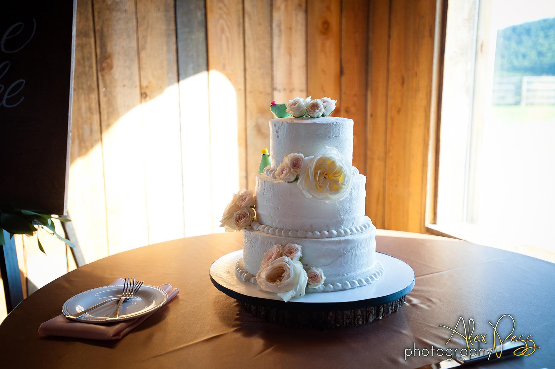 Raise The Ruth Events+Lydia Mountain+Virginia Wedding