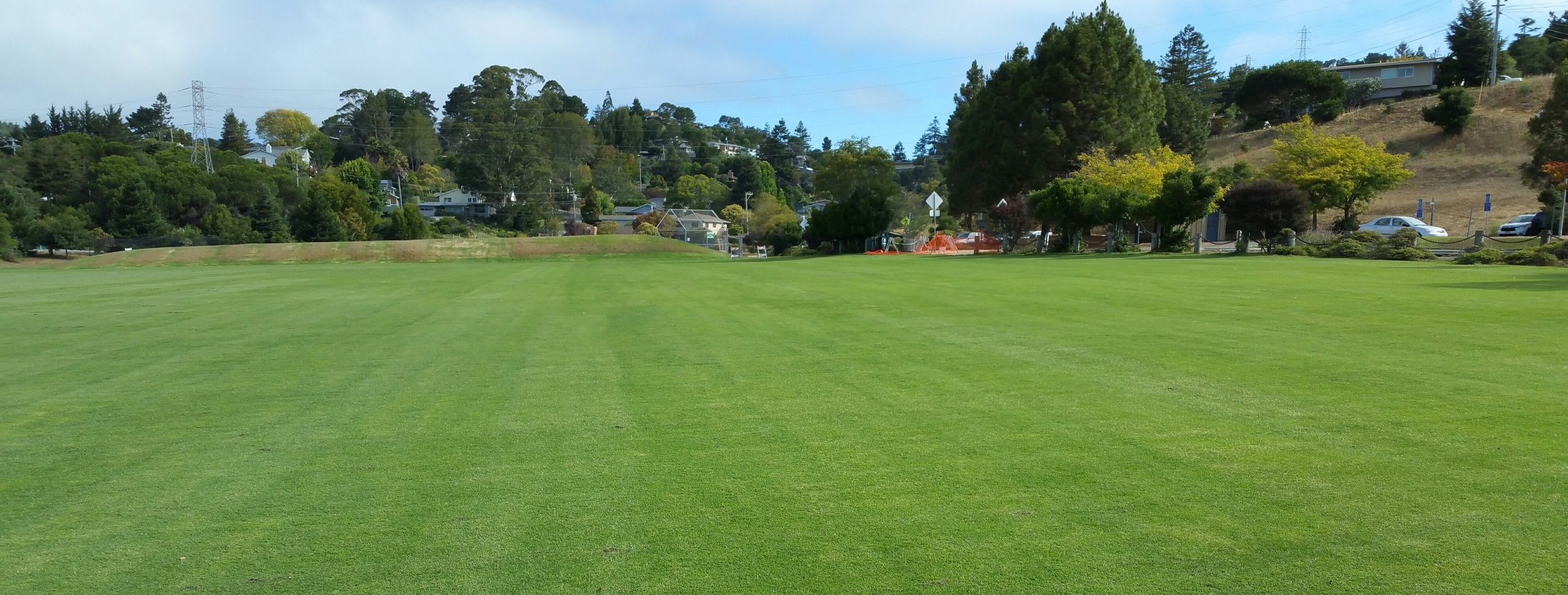 Learn more about the Field Renovation Project