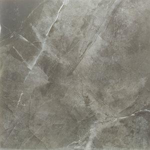 Moon Grey Polished 24x24