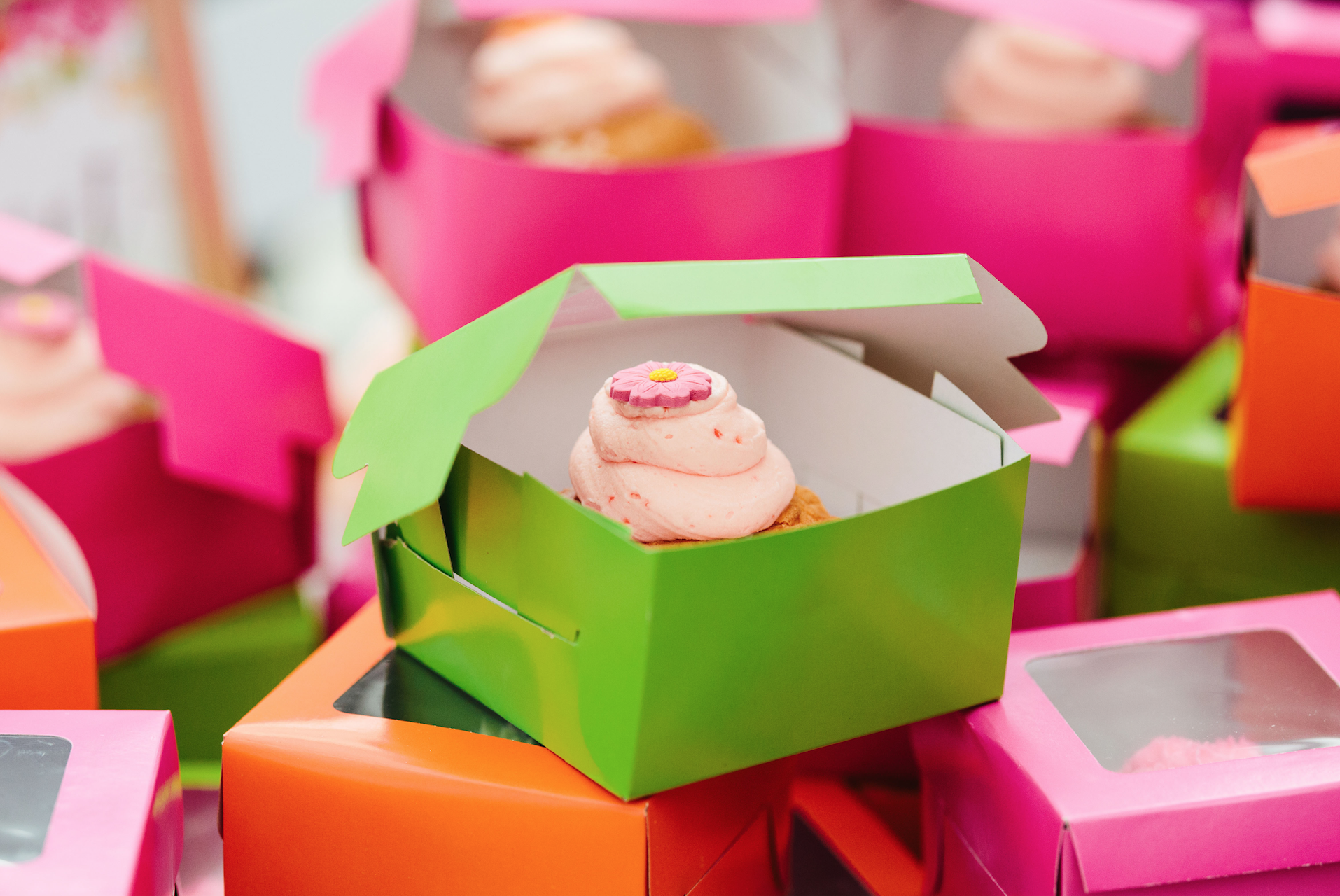 Cupcakes boxed in bright colors.