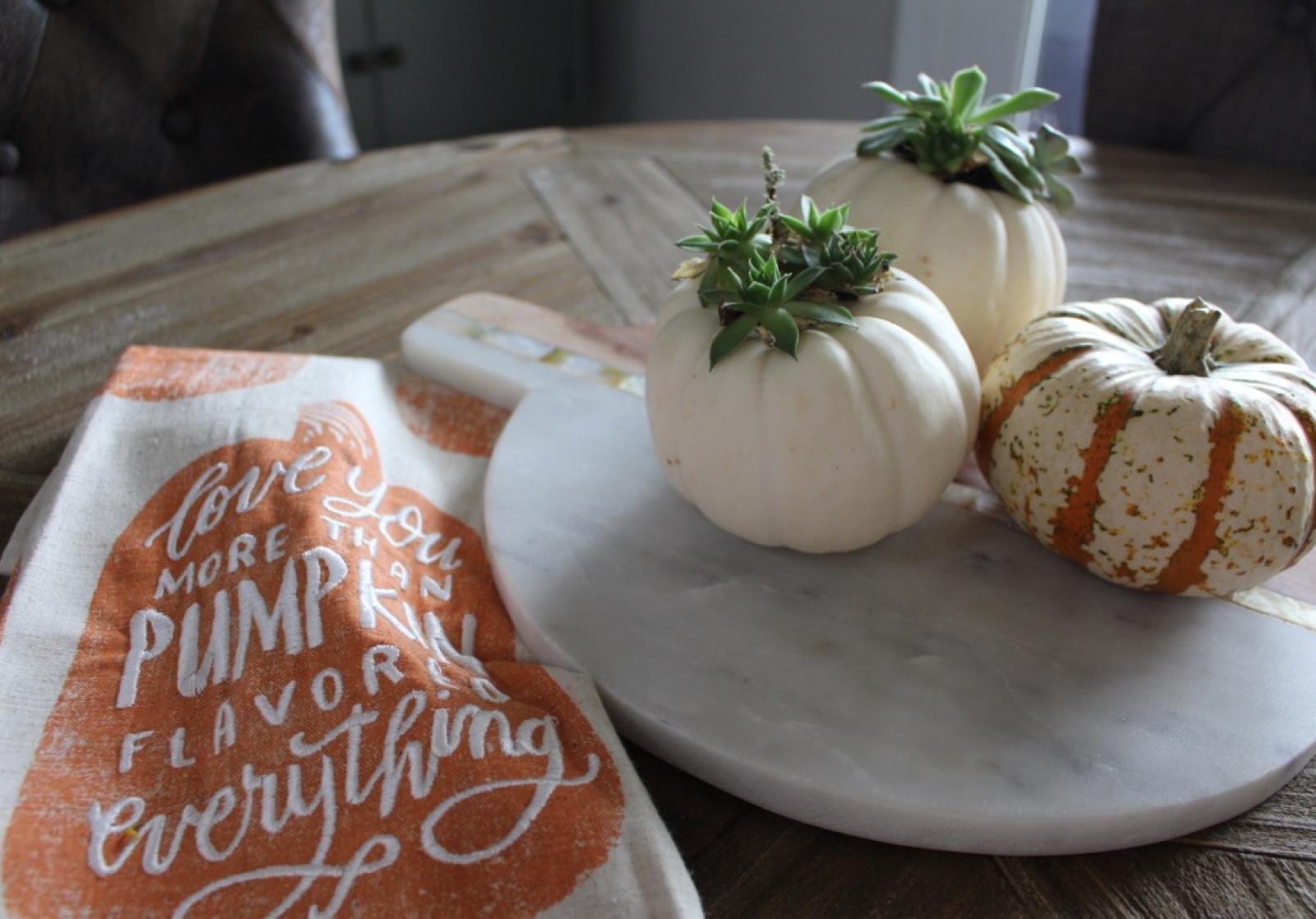 Mini pumpkins and succulents.