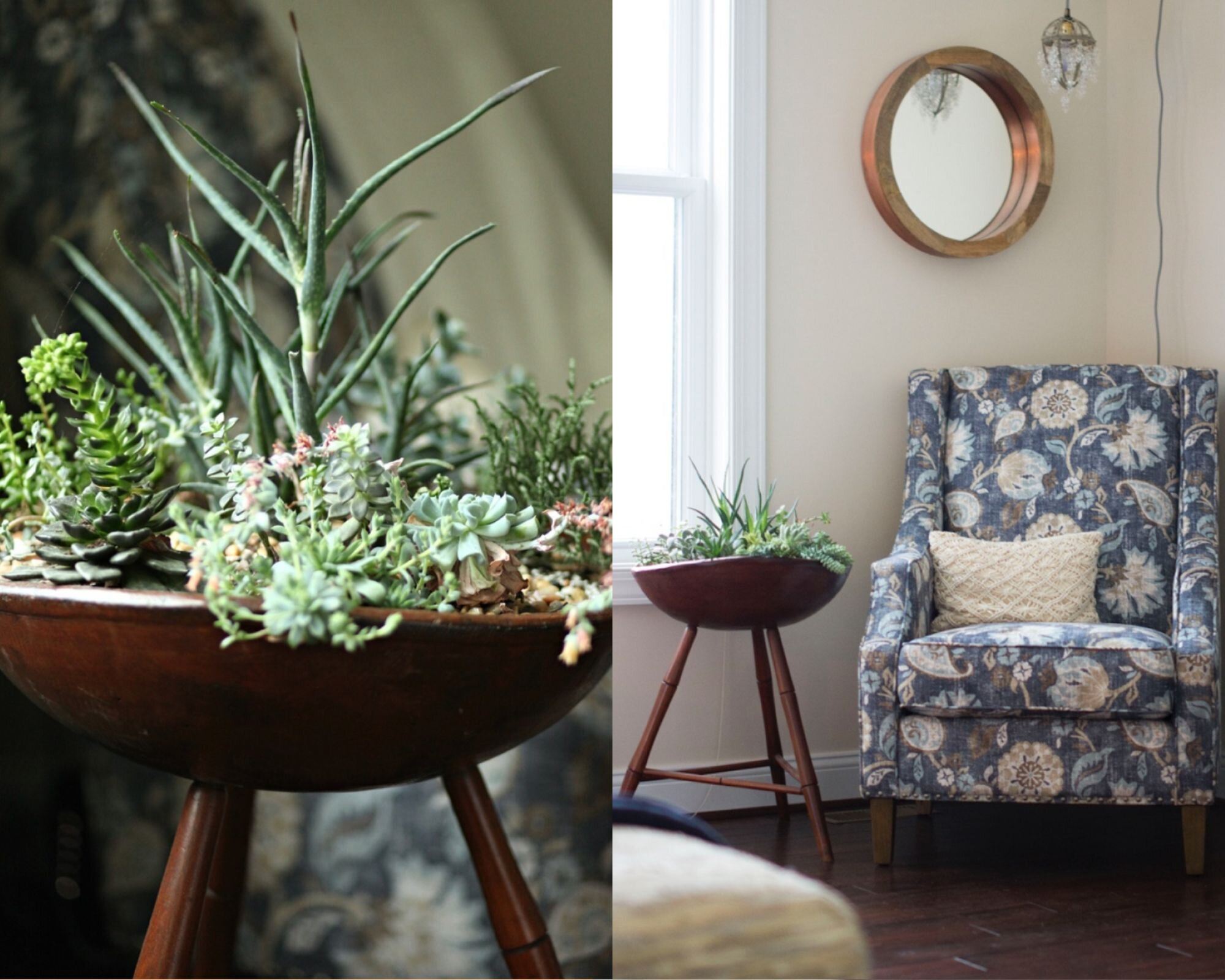 I love using vintage pieces to style my plants.