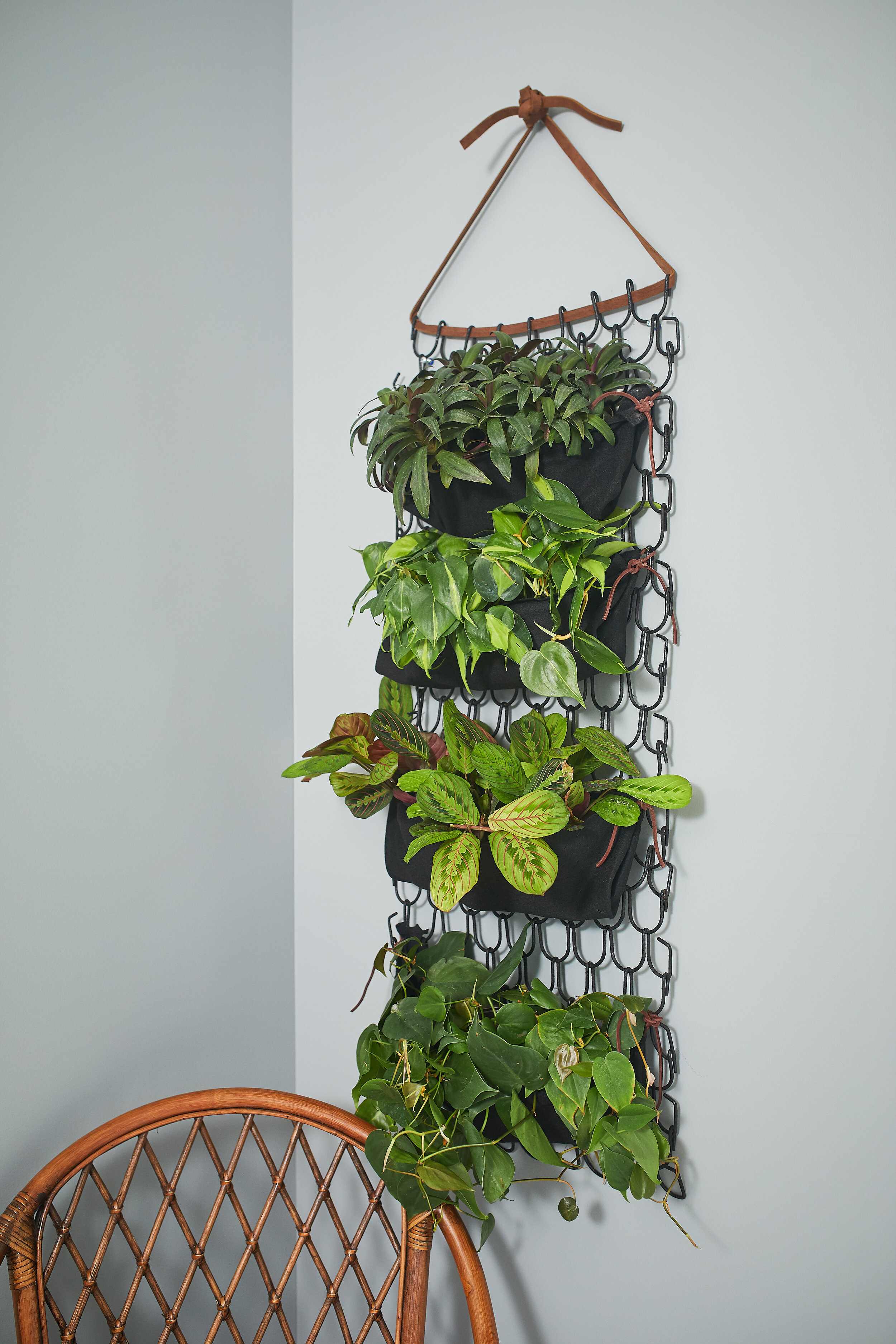Finished Plant Wall