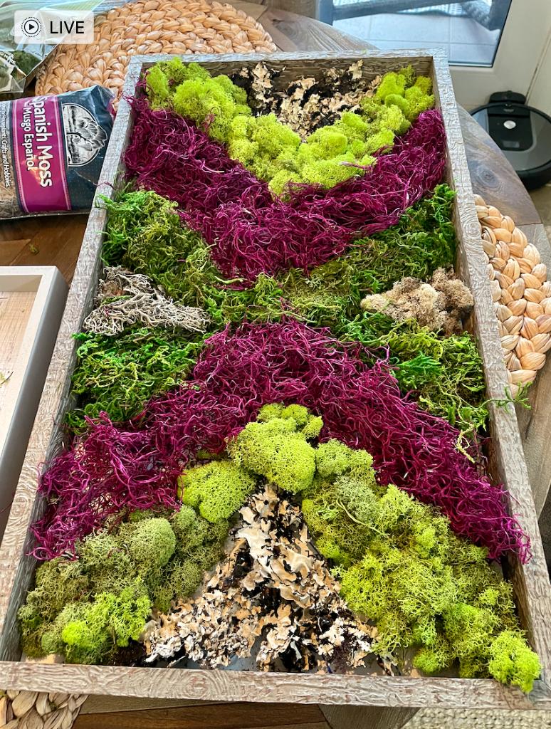 Preserved moss in chevron pattern
